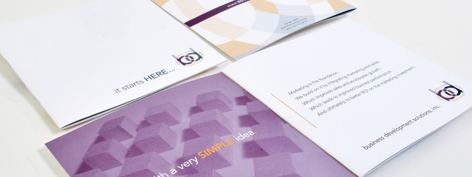 Business Development Solutions Marketing Brochure